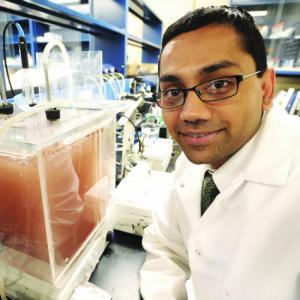 Portrait of Prof. Kartik Chandran